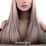 DS_Dark_Silver_ok